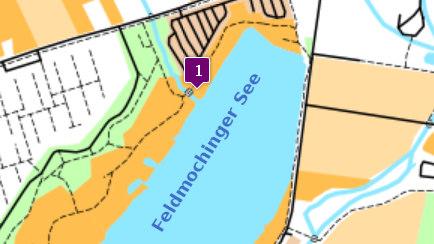 Feldmochinger See